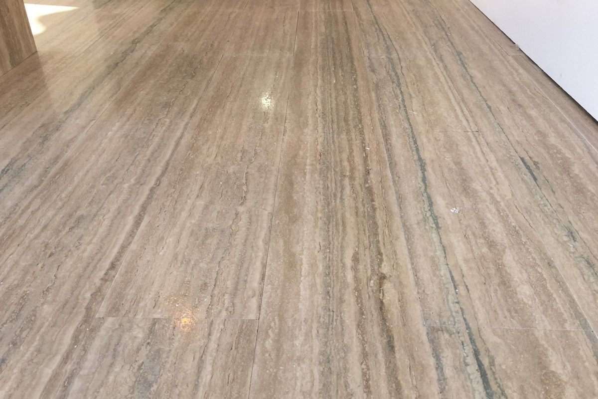 roman travertine silver alga